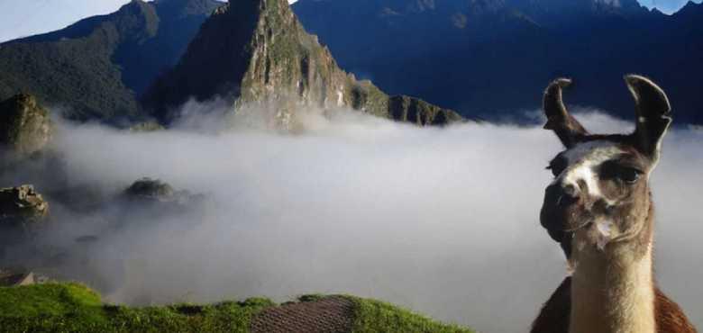 tour Machu Picchu 1 dia
