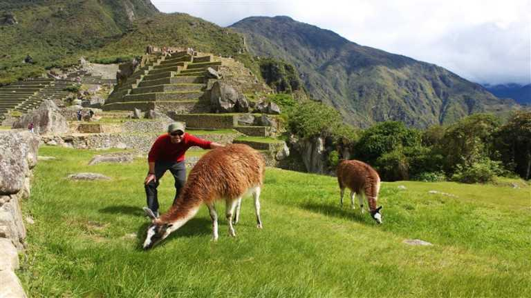 excursion en machu picchu