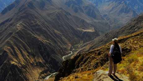 Full day Cañon del Colca desde Arequipa